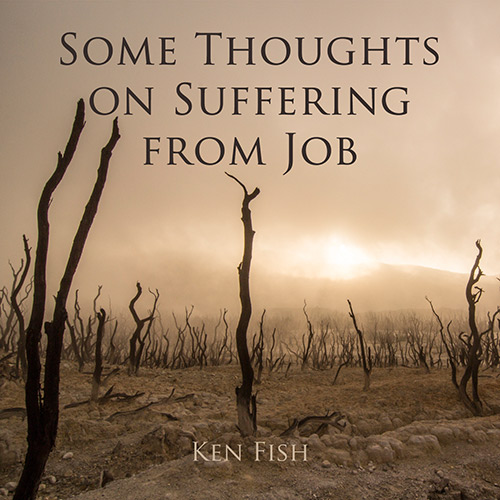 Some Thoughts On Suffering From Job